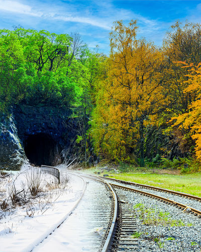 Trees by railroad track against sky during autumn