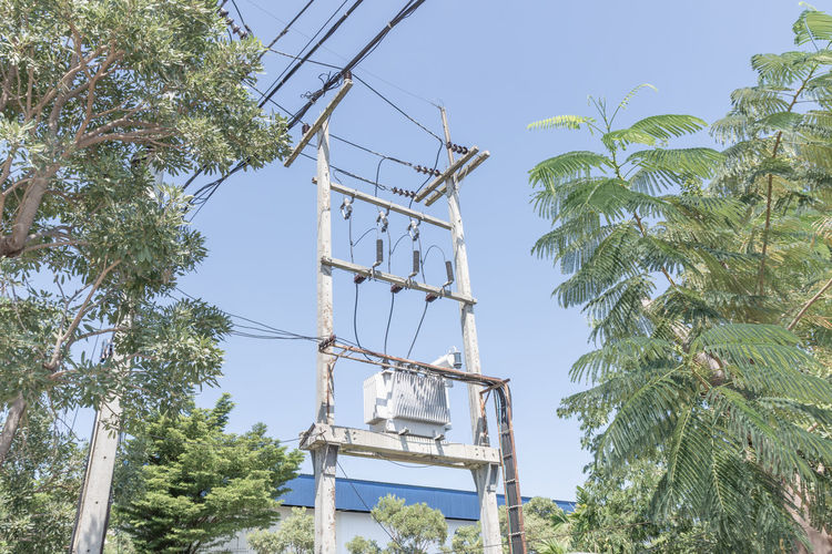 Tree Plant Sky Technology Outdoors Built Structure Connection Cable Pole Transformers Power Voltage High Electricity  Energy Engineering