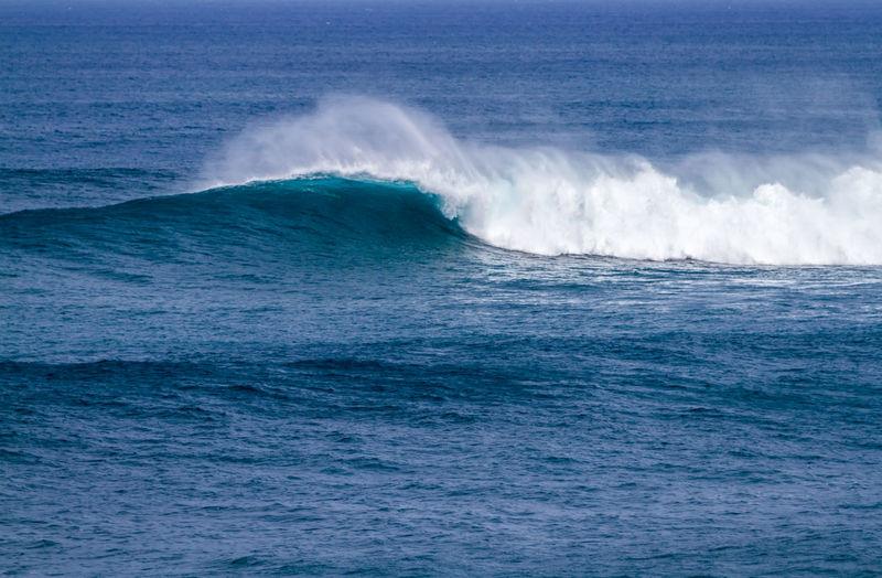 Waimea bay Oahu Hawaii BIG Haleiwa  Oahu Hawaii Surf Travel Waimea Bay Beach Park Beach Beauty In Nature Breaking Waves Crashing Waves  Day Hawaiian Nature No People North Shore Ocean Waves Outdoors Pacific Ocean Scenics Sea Spray Surfing Waves Water Waterfront Wave
