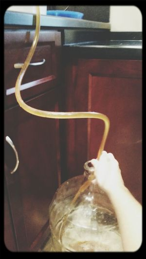Transferring the first batch to the secondary fermentation container