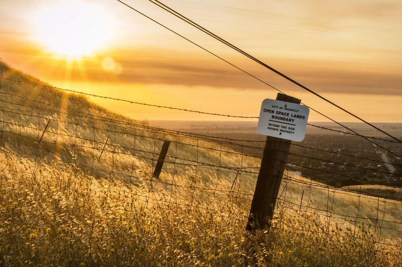 Boundary Golden Hour Vacaville Vacaville Hills Vacavillecalifornia Morning Sun Morning Walk Hike Boundary Barbed Wire Pena Adobe 43 Golden Moments Hidden Gems  Sommergefühle