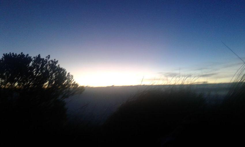horizonte Tree Sunset Rural Scene Silhouette Sunlight Autumn Morning Sky Landscape Grass Dramatic Sky Dramatic Sky Sunbeam Growing Growing Growing Growing Streaming Streaming Shining Sky Only Atmospheric Mood Atmospheric Mood Atmospheric Mood Sky Only Sky Only Streaming Streaming Streaming Streaming