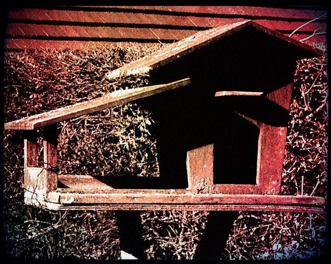 Nature Birds House La Casa Sperduta Nel Parco