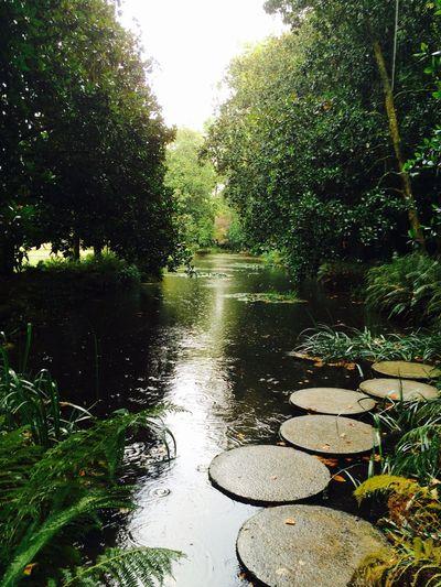 Le Plan D'eau Jardins
