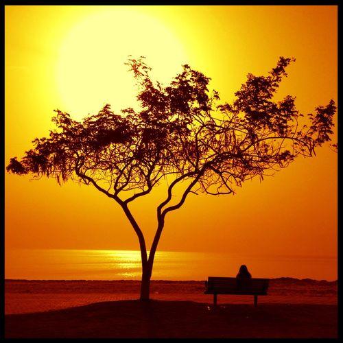Silhouette at khiran Resort Silhouette