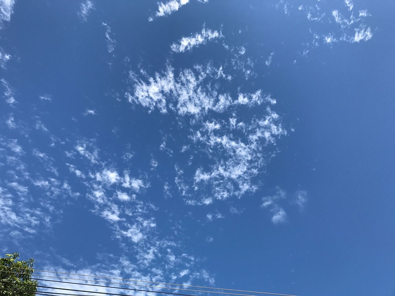low angle view, sky, blue, nature, beauty in nature, cloud - sky, day, no people, outdoors, scenics, tranquility, tree