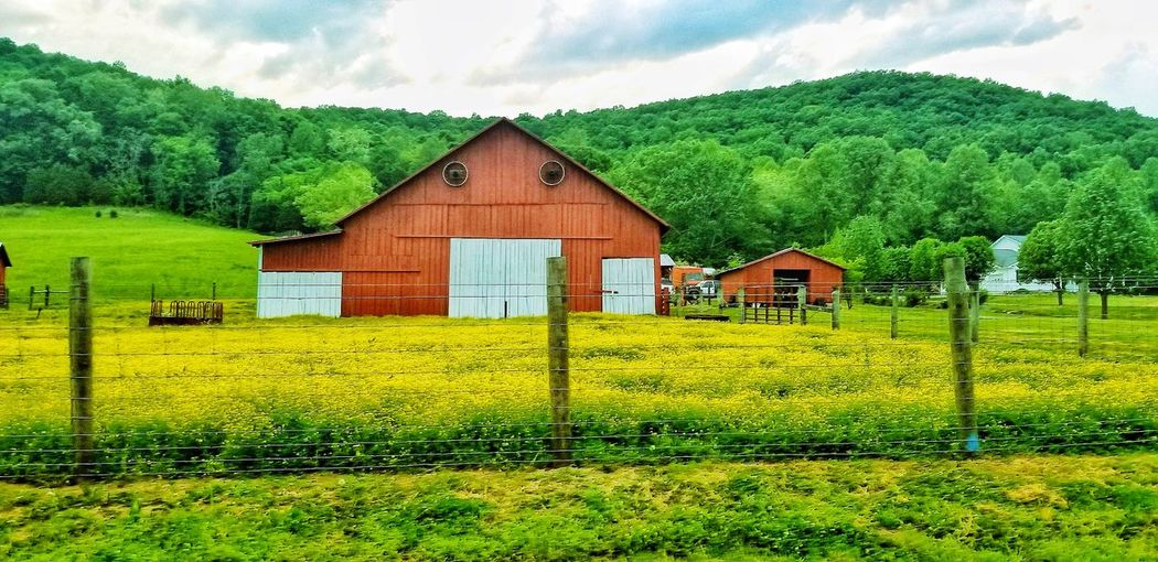 Red barn amidst