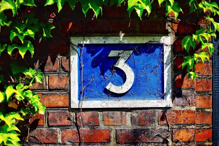 Number 3 old brick wall Communication Architecture No People Text Day Sign Number Plant Wall - Building Feature Outdoors Close-up Plant Part Wall Blue Leaf Built Structure Growth Western Script Information Nature