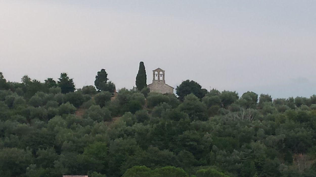 Assisi, Italy Cattedrale Italia Medioeval Cities Medioevo Trasimeno Trasimenolake Umbria