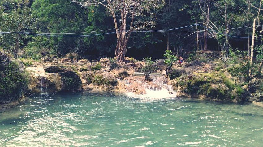 Splashing EyeemPhilippines Tree Waterfall Nature Beauty In Nature Outdoors Vacations Water Nature Motion