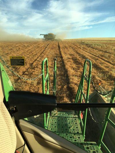 EyeEmNewHere Field Agriculture Rural Scene Combine Harvester Lentil Crop Saskatchewan John Deere Harvesting