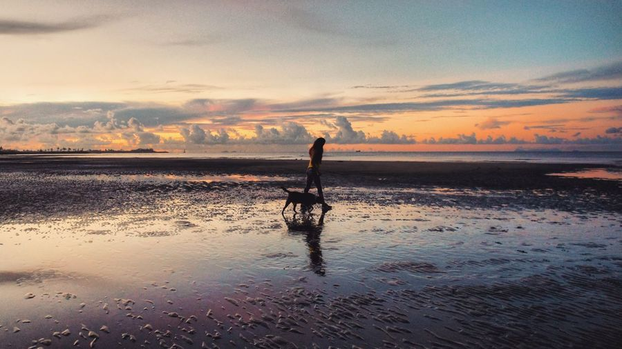 Woman Walking On Shore At Beach Against Sky During Sunset