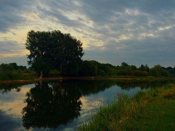 Nature Lake Рівне / Rivne Природа Україна