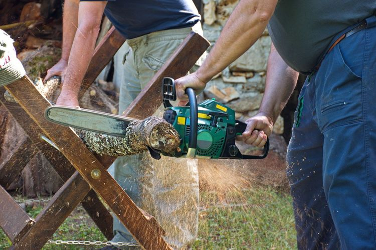 Midsection of two men sawing wood using motor saw