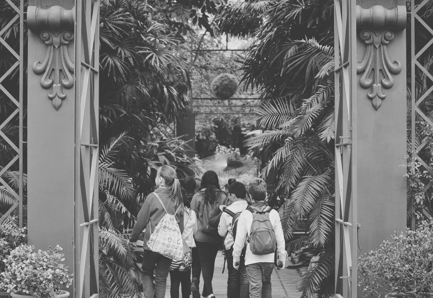 Narnia  Kids Scouts at Jardí Botànic, Valencia, Spain Monochrome Photography Finding New Frontiers The Architect - 2017 EyeEm Awards Neighborhood Map BYOPaper! Be. Ready.