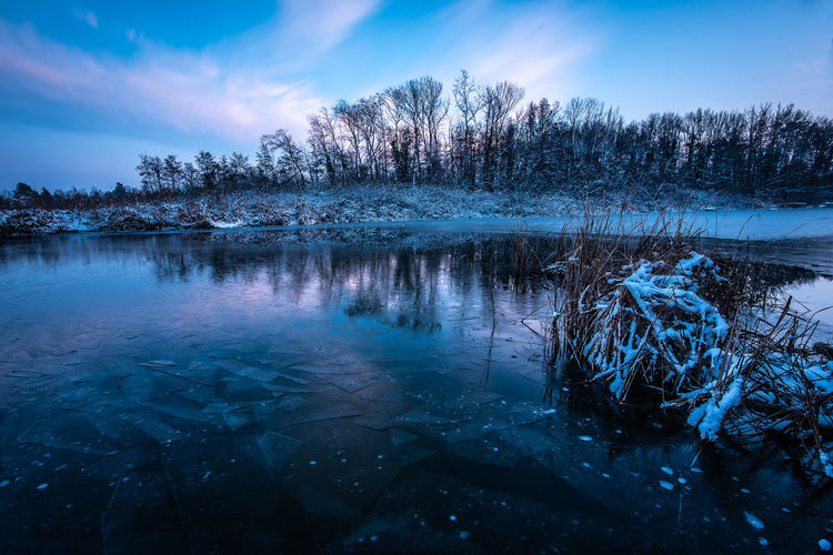 Sunset Pink Color Blue Long Exposure Riverside River Frozen Frost Ice Outdoors Non-urban Scene Cloud - Sky Snow Scenics - Nature No People Cold Temperature Water Nature Beauty In Nature Tranquility Sky Winter Plant Tree Copy Space