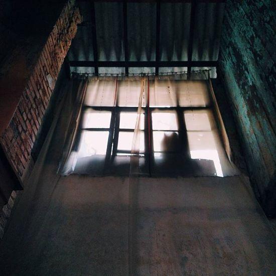 Windows_by_bivasc ❤ Fridays