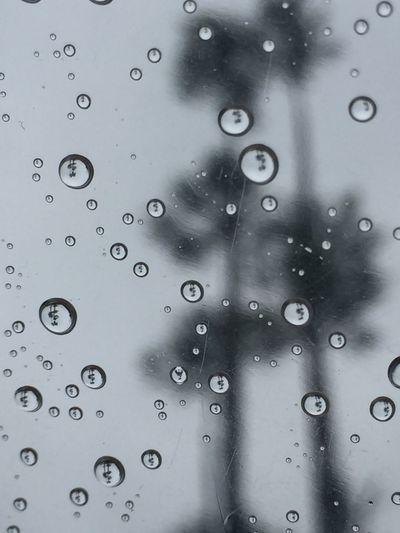 Http://youtu.be/smQNYg5gtCM John Fogerty Have You Ever Seen The Rain