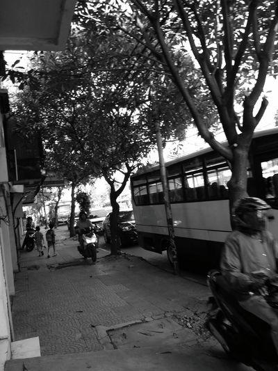 Street Snapshot Black And White Photography Law Breaker Pedestrian Morning