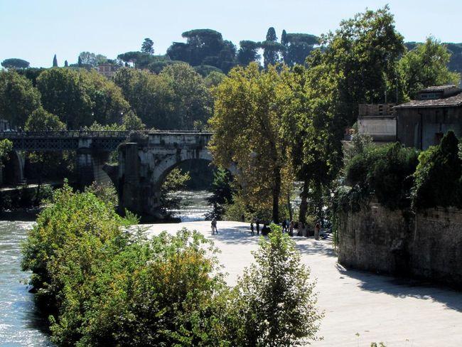 Tiberinsel Tree Water Bridge - Man Made Structure River Sky Architecture