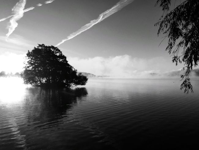 I believe in nature Enjoying Life Eye4photography  Nature Sweden Blackandwhite Black And White Monochrome Bw_collection