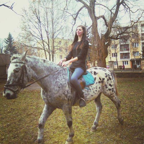 Horseriding Freedom Slovakia Love