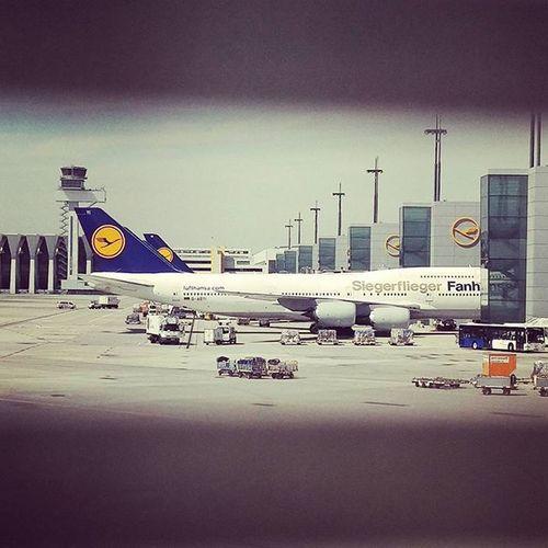 """The """"Fanhansa"""" Siegerflieger by @Lufthansa."""