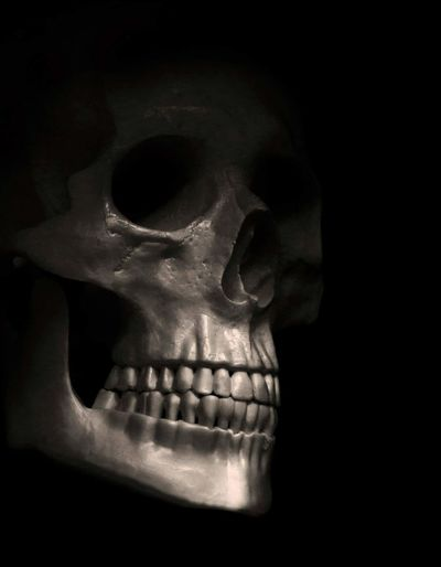 Belowthesurface Contrast Dark Light And Shadow Mystery Portrait Simplicity Skeletal Skull Unhidden Whatsontheinside Learn & Shoot: Simplicity