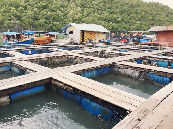 Floating Market Fishfarm Sea Langkawi Floating Restaurant First Eyeem Photo
