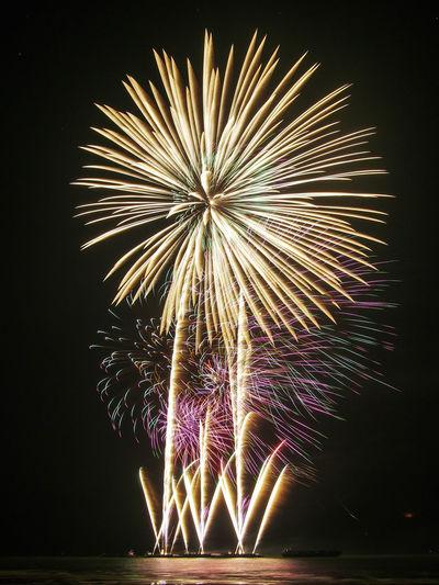 Firework...like a flower First Eyeem Photo