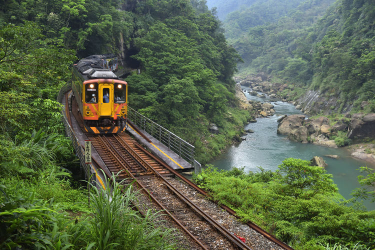 Beauty In Nature Cool Day Forest Green Color Growth Locomotive Mode Of Transport Mountain Nature Outdoors Plant Public Transportation Railroad Track Real People River Scenics Sky Steam Train Train Train - Vehicle Transportation Travel Tree Water