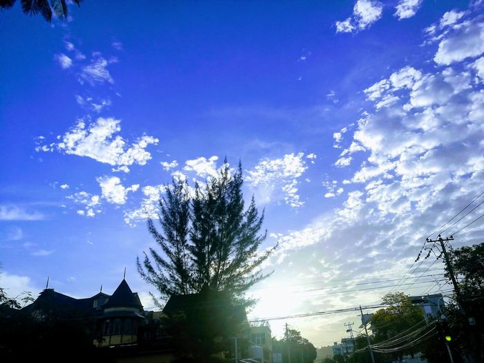 Blue Sky And White Clouds Tree Blue Silhouette Sky Architecture Building Exterior Built Structure Cloud - Sky Tranquil Scene Scenics