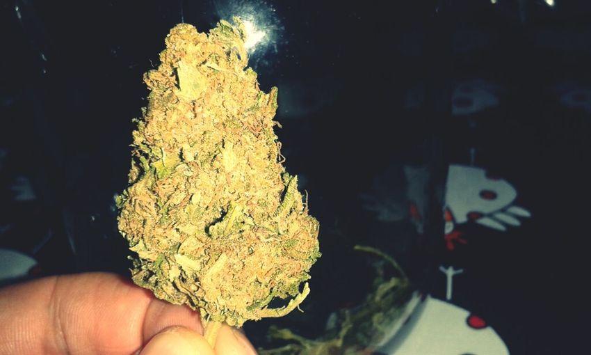 The last one Smoking Weed Weed Marijuana Cogollo