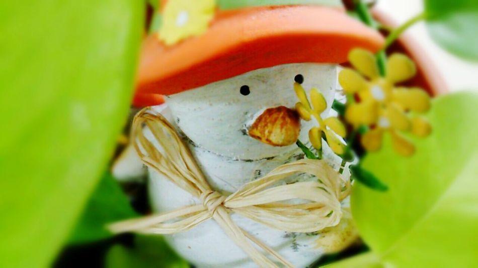 ( *・ω・)ノGood morning♪ Good Morning! Toy Leafs Leaf Fantasy Color Photography From My Point Of View Hello World EyeEm Gallery Enjoying Life Cute Gleen EyeEm Best Shots Flower