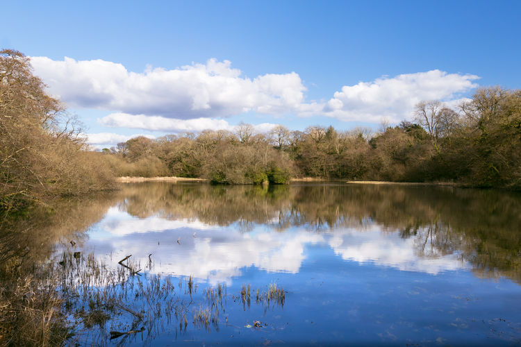 Killay Pond -