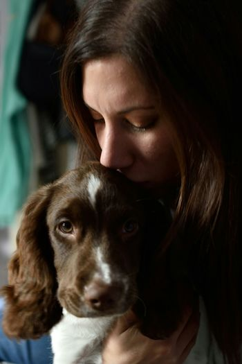 Colour Version Check This Out Taking Photos Springer Spaniel MyLoves Myfamily NikonD5500 Check This Out Wifey♡ Puppy Soulmate Nikkor 40mm Micro This Week On Eyeem Beautyineverything Beginnerphotographer Beautiful