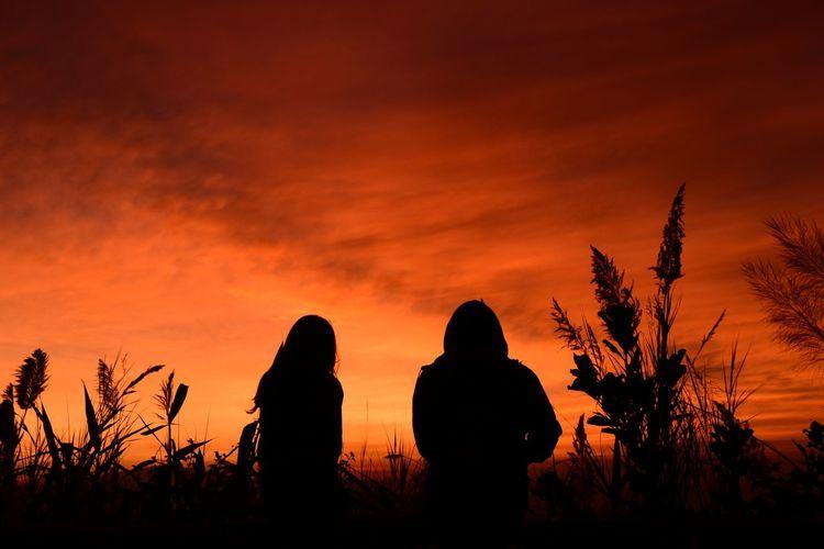 Silhouette people sitting on field against orange sky