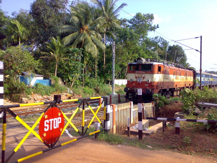 Closed Railway Gate when train passing. Abundance Closed Day Gate Green Color India Kerala Moving No People Non Urban Scene Outdoors Passing Rail Railway Railway Crossing Railway Crossing Gates Rural Rural Scenes South India Stop Sign Stop Signal Train Transportation Tree Village