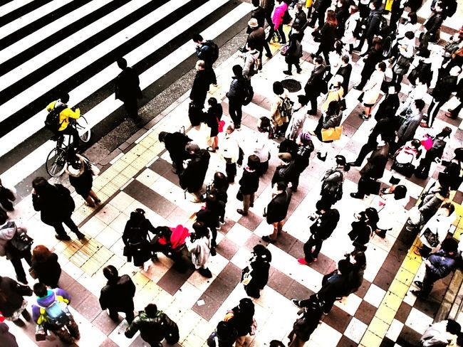 High Angle View Large Group Of People Crowded Streets City Life Pedestrian Crossing Osaka Station Osaka Street Photography Japanese Style Cityscape Pedestrian Japan Photography Street Photograpy Japan Street Photograph Streetphoto_color