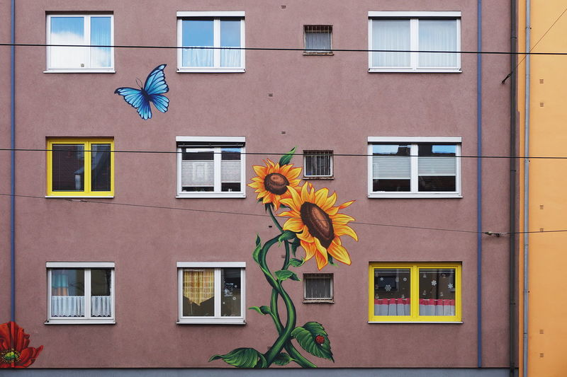 Yellow flowers on building
