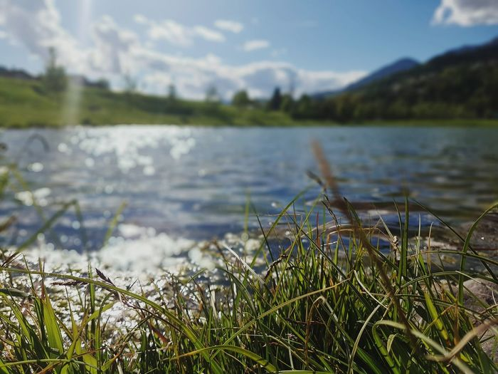 Water Nature Lake Grass Beauty In Nature Tranquility No People Outdoors Day Scenics Sky Freshness Eye4photography  Springtime EyeEm Nature Lover S7 S7 Photography Trentino Alto Adige Landscape Check This Out Power In Nature Walking Around Beauty In Nature Tranquility Green Color
