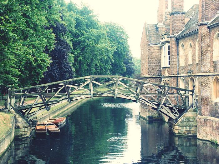 Mathematical Bridge 🙌 Queen's College College Mathematical Bridge Cambridge Bridge Trees Built Structure Architecture Day Outdoors Water River Building Exterior No People Sky Nature