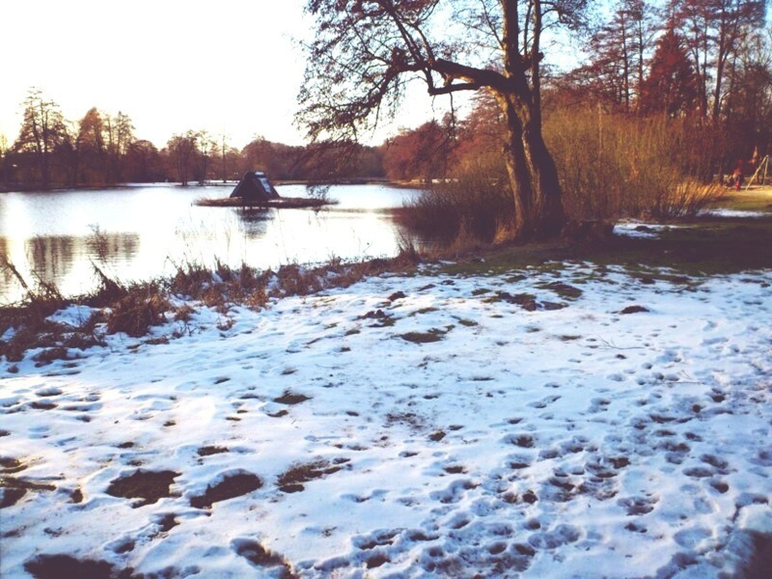 water, winter, tranquil scene, snow, tree, tranquility, cold temperature, lake, scenics, nature, beauty in nature, river, reflection, frozen, season, lakeshore, non-urban scene, forest, bare tree, sky