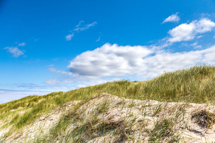 Dunes Beauty In Nature Blue Buhne16 Cloud - Sky Day Dunes Grass Growth Landscape Nature No People Outdoors Scenics Sky Sylt Tranquil Scene Tranquility