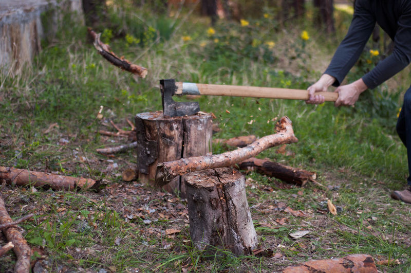 Man hitting tree stump with axe in forest