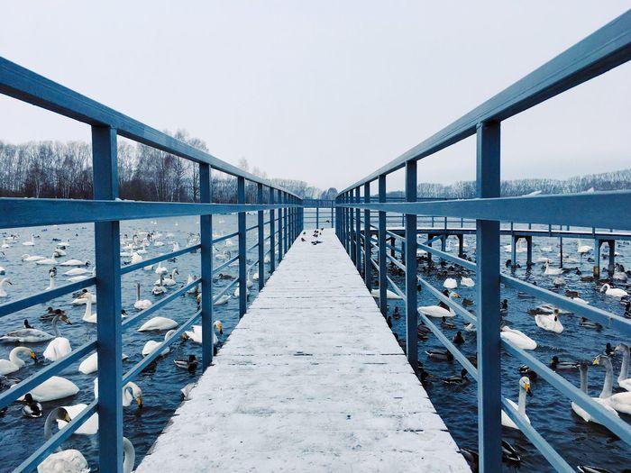 Footbridge over sea against clear sky. svetloe lake