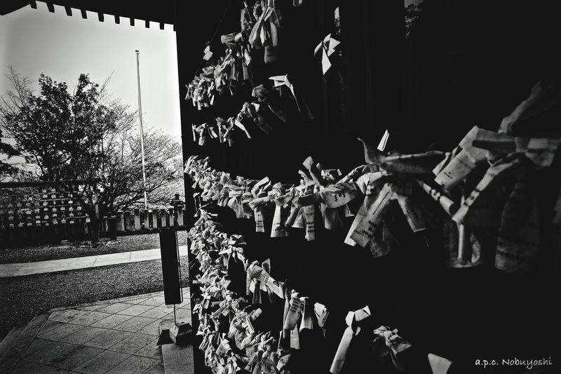 Admonish -戒- Fujifilm X-E2 静寂 XF14mmF2.8R Japan Fukui Monochrome Shrine 日本 おみくじ