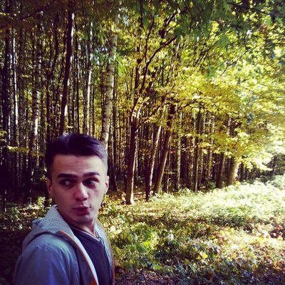 Zeus_sama Forest