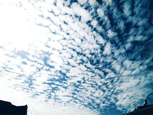 Cloud Sad & Lonely