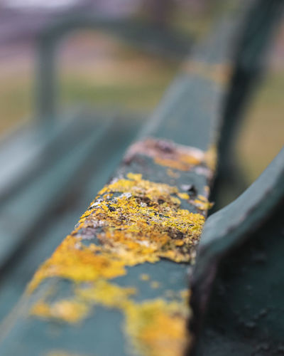 Close-up of yellow rusty metal on road